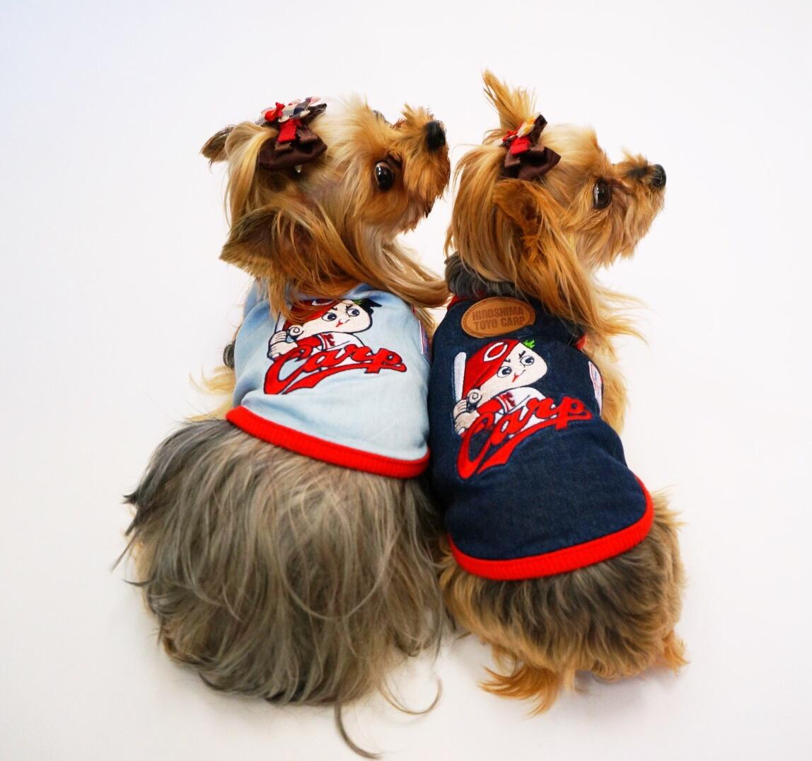 小型中型犬用 デニムTシャツ カープ坊やver