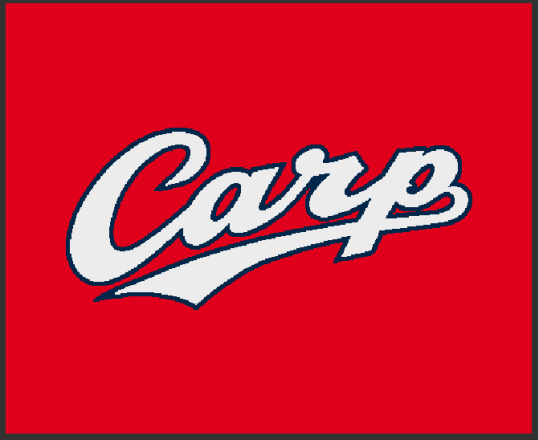 家庭用カープマット「CARP LOGO」