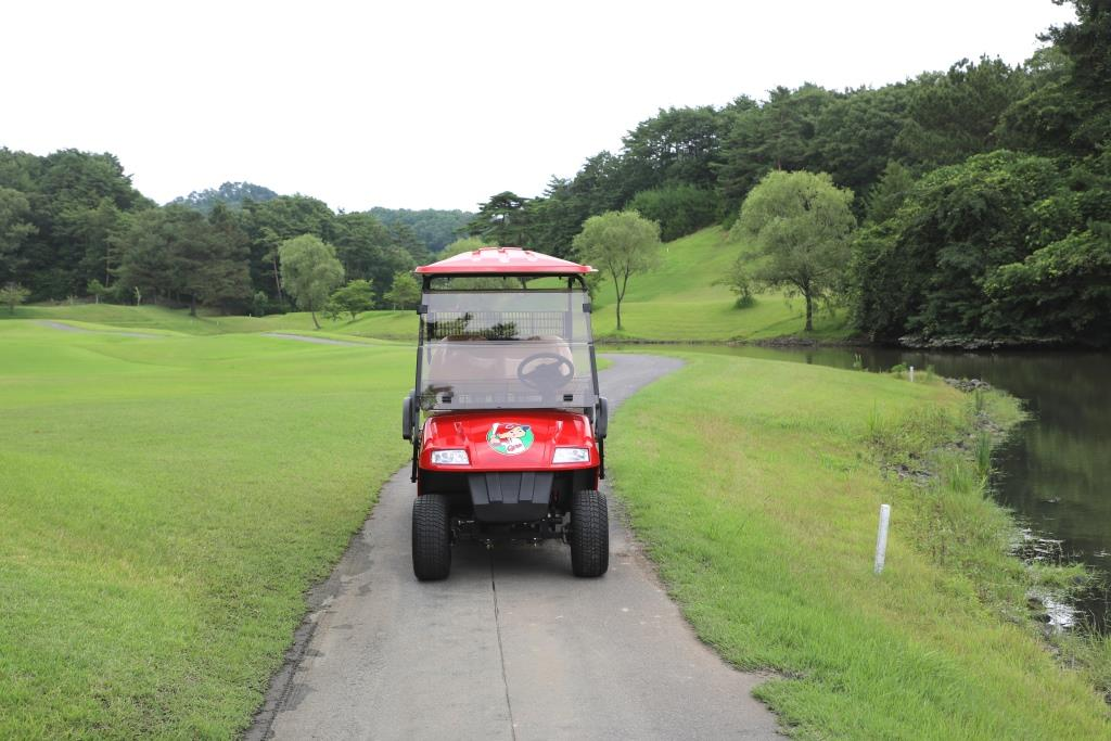 台数限定 熱烈!CARP愛を込めて広島東洋カープ承認の電動ゴルフカート